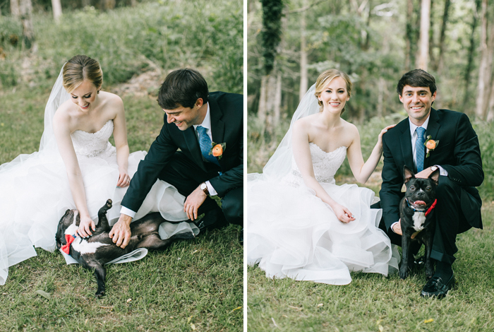 furry friends on your wedding day