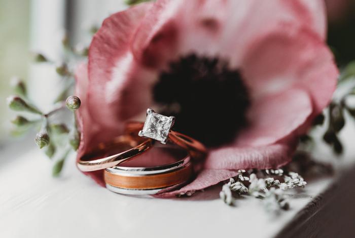 blush anemone